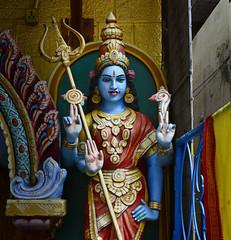 The Blue Hued Durga at Veerapillai Street, Bangalore (Anoop Negi) Tags: bangalore karnataka veerapillai street durga temple portrait blue hued power shakti manifestation hinduism woman feminine force anoop negi photo photography ezee123 india
