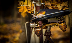 Old seat.... (Kevin Povenz Thanks for all the views and comments) Tags: 2016 november kevinpovenz westmichigan michigan ottawa ottawacounty bicycle seat rust spring springs fall autumn leaves yellow canon7dmarkii