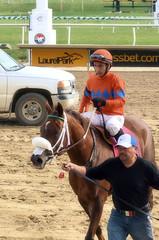 2016-11-06 (48)-1 r3 Horacio Karamanos on #8 Marabea at Laurel Park - winner (JLeeFleenor) Tags: photos photography md marylandhorseracing racing track laurelpark horaciokaramanos jockey   jinete  dokej jocheu  jquei okej kilparatsastaja rennreiter fantino    jokey ngi horses thoroughbreds equine equestrian cheval cavalo cavallo cavall caballo pferd paard perd hevonen hest hestur cal kon konj beygir capall ceffyl cuddy yarraman faras alogo soos kuda uma pfeerd koin    hst     ko  winner