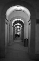 Florence (michele.palombi) Tags: firenze uffizi darkroom analogico film toscana italia