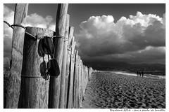 Qui a perdu ses lunettes ? (bryzlame - photo) Tags: lunette soleil plage beach nuages bryzlame sony rx 100 monochrome mer corse