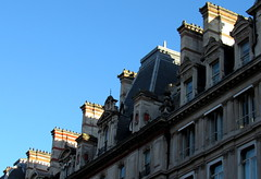 British roofs (mimu81) Tags: london londra unitedkingdom english british england roofs city house