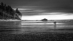 Low Tide (Kirk Lougheed) Tags: olympic olympicnationalpark olympicpeninsula rubybeach usa unitedstates washington beach blackandwhite coast landscape lowtide monochrome ocean outdoor pacific pacificocean sea shore shoreline summer water
