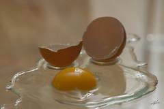 Huevo (mlorenzovilchez) Tags: huevo egg uf  gallina nikond7200 nikkor105