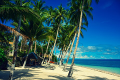 Tropical Paradise (free3yourmind) Tags: tropical paradise palms beach sea water blue green turquoise clouds bohol philippines holidays vacations travel exotic