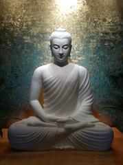 2015-06-29_214653 (廣結善緣 歡迎分享 慈悲的南無阿彌陀) Tags: amitofu namo amitabha 南無阿彌陀佛