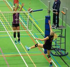 1B260880 (roel.ubels) Tags: vv utrecht eurosped galgewaard volleybal volleyball 18 finale nationale beker