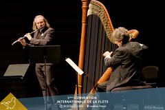 Concert de Patrick Gallois