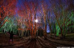 La foresta degli spiriti (Matteo Nebiacolombo) Tags: foresta fantasma ghost liguria notte lightpainting