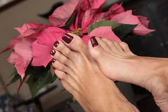 Pepper (IPMT) Tags: toenail sexy toes polish foot feet pedicure painted toenails pedi barefoot zoya barefeet pepper descalza brick red cream marsala shade peter som poinsettia pascua