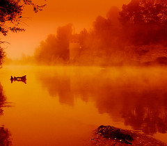 Niebla en rojo (nosololuz) Tags: niebla rojo ro roebro agua troncos paisaje naturaleza rboles bosque riberadebre lillabenissanet virado amarillo hojas nosololuz