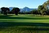50 shades of green (marko vogrin) Tags: princerville golf green kauai hawaii
