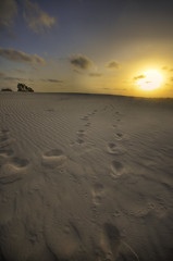 Walking, on the moon. (amira_a) Tags: sunset sand nikon dune steps sigma wideangle 1020mm footprint d5100