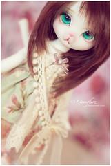 Cotton Candy (Einwegherz) Tags: girl misty cat ball dorothy doll mine bokeh kitty le tiny bjd dear abjd anthro jointed dearmine