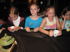 IMG_8417.JPG (summes01) Tags: party june claire unitedstates michigan harry potter audra lambertville 2013