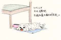(Apaul) Tags: dog stylus colorpencil 201306