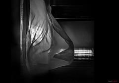 Wind II ... [Explored]* ( Juan_de (ON - OFF)) Tags: blancoynegro blackwhite noiretblanc pretoebranco biancoenero