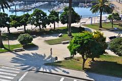 La sombra de la palmera. (lumog37) Tags: trees gardens port puerto dock arboles jardines drsena