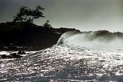 16-596 (ndpa / s. lundeen, archivist) Tags: ocean color tree film water 35mm hawaii coast rocks surf waves break oahu nick wave spray pacificocean northshore honolulu 16 splash 1970s 1973 waimeabay breakingwave crashingwaves dewolf breakingwaves nickdewolf photographbynickdewolf reel16