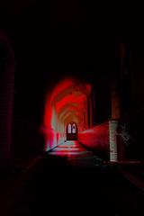 The Hallway (Q. Meloen) Tags: red rot dark joseph rouge spider spiders spin fear gang corridor spyder hallway psycho alfred hitchcock sir rood angst donker thriller spinnen araignes araas rillingen
