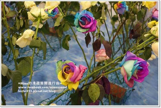 고양국제꽃박람회031