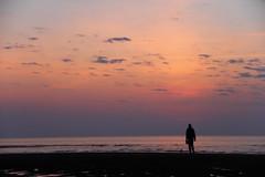 Speckled Sky --  Explored 5/22/15  ! (SueZinVT) Tags: capecod cape cod