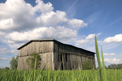 The Old Barn (parkerbernd) Tags: old light field clouds barn germany season lumix wooden spring fantastic country panasonic explore flowering springtime acre alte scheune gx1
