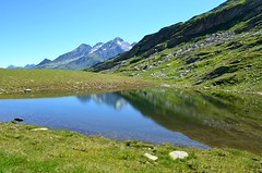 Lago Scai , 2300 m (dino_x) Tags: mountains montagna acqua allaperto reflections roccia riflessi switzerland saveearth colours