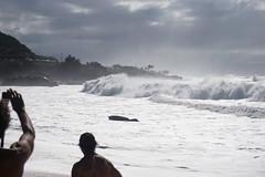 DSC05052 (neilreadhead) Tags: awt1 hawaii oahu waimeabay