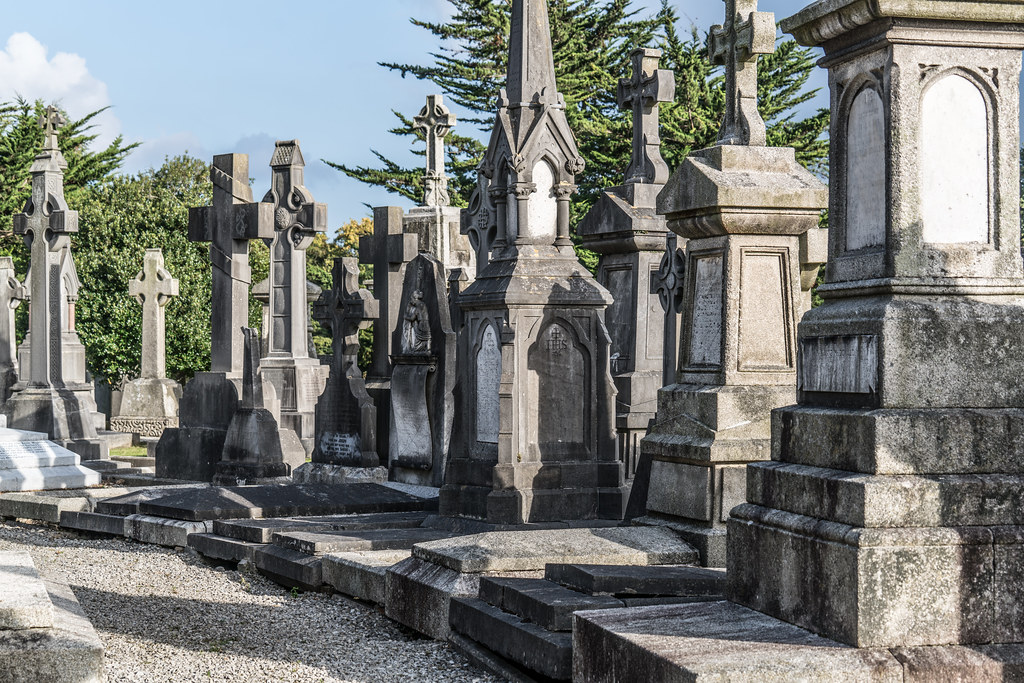 A QUICK VISIT TO GLASNEVIN CEMETERY[SONY F2.8 70-200 GM LENS]-122122