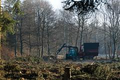 ckuchem-7180 (christine_kuchem) Tags: wald abholzung baum baumstmme bume einschlag fichten holzeinschlag holzwirtschaft waldwirtschaft