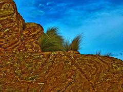 Tenacious II (elphweb) Tags: australia nsw seaside overcast cloudy rocks rocky rockformation fhdr falsehdr