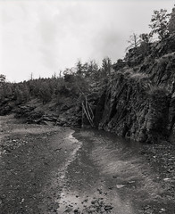 Glass Gorge (GrisFroid) Tags: landscape creek gorge flindersranges 120 film bw mamiya rz67 ilford fp4