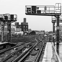 Waterloo station (Michael Erhardsson) Tags: london waterloo station railwaystation jrnvg spr 2013 hst resa oktober svartvitt england