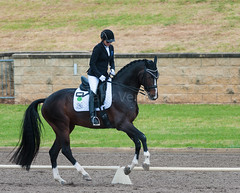161023_Aust_D_Champs_Sun_Med_4.2_6235.jpg (FranzVenhaus) Tags: athletes dressage australia siec equestrian riders horses performance event competition nsw sydney aus