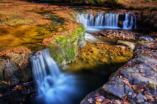 Autumn Woodland Waterfalls