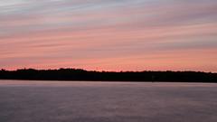 Pink Dreams DSL6616 (iloleo) Tags: sunset colourful bonitasprings florida nikond7000 nature longexposure landscape gulfofmexico le