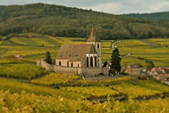 Hunawihr (Wanderer in Wonderland) Tags: hunawihr alsace vineyards vignes vignoble french france village picturesque pittoresque campagne countryside frenchvillage autumn fall hautrhin
