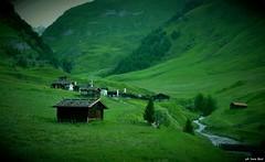 DSC_4592 (bosilucabasilio) Tags: trentino altoadige monti baita valle prato rio pusteria bolzano montagna rifugio pastorizia allaperto distesa erbosa paesaggio campo collina