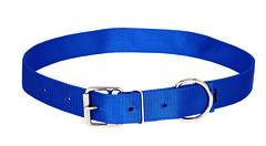 358002BL (Sharp Show Supply) Tags: 358002bl beef blue dairy hobble lead livestock neck nose strap