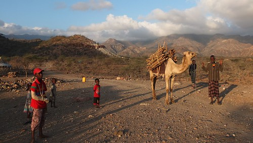 Djibouti_2014 - Dougoum