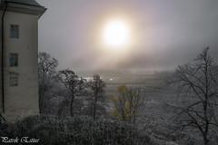 Frosty & Misty Castle (Patrik Estius) Tags: nikon sweden se d3300 patrikestius estius gallery escandinavia suecia schweden skandinavien nordisch scandinavie nordique norden outdoor nordic scandinavia sverige europe nature stergtland linkping ekens slott ekensslott spkslott