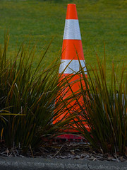 A Cone of Silence (Steve Taylor (Photography)) Tags: cone road traffic plastic newzealand nz southisland canterbury christchurch city cbd plant grass lawn green white orange coneofsilence