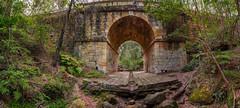 Lennox Bridge pano II (nikabuz) Tags: australia blaxland bluemountains lennoxbridge nsw ferns historicalsite sandstonebridge