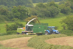 Claas Jaguar 890 SPFH filling a Smyth Trailers FieldMaster Trailer drawn by a New Holland T7050 Tractor (Shane Casey CK25) Tags: claas jaguar 890 spfh filling smyth trailers fieldmaster trailer drawn new holland t7050 tractor blue cnh nh castlelyons silage silage16 silage2016 grass grass16 grass2016 winter feed fodder county cork ireland irish farm farmer farming agri agriculture contractor field ground soil earth cows cattle work working horse power horsepower hp pull pulling cut cutting crop lifting machine machinery nikon d7100 traktori tracteur traktor trekker trator cignik