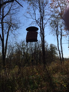 Kentucky Whitetail Hunt 13
