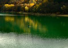 _DSC7626 (Giuseppe Cocchieri) Tags: autumn autunno allaperto alberi albero acqua water lago lake landscape paesaggio colore colori colour
