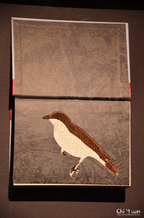 澳洲當代新藝術展05.jpg