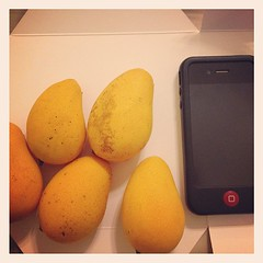 cutesy mini mangoes (.  .) Tags: square sierra squareformat iphoneography instagramapp uploaded:by=instagram