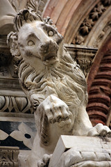 special lion 1 (Serenae) Tags: trip light vacation italy sculpture holiday streets building history window beautiful architecture spring europe italia break shadows cathedral details lion arches tuscany historical siena walls duomo toscana 2013 5cardflickr